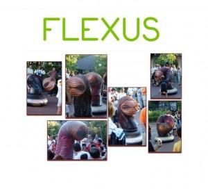 flexus-logo-imagenes1