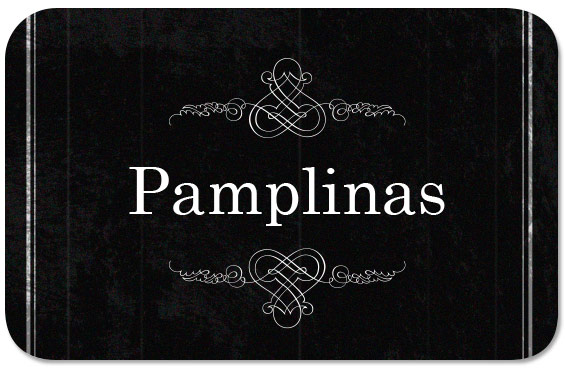 Bannerpasacalles-Pamplinas